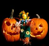 Free Photo - Scarecrow standing with Pumpkins