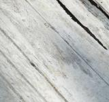 Free Photo - White Painted Wood Texture