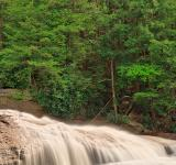 Free Photo - Spring Swallow Falls - HDR