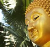 Free Photo - Golden Buddha Face