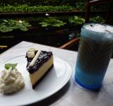 Free Photo - Coffee Cream and Cake Outside