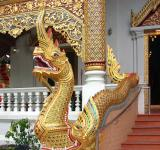 Free Photo - Naga - Phra Singh Temple