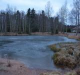 Free Photo - Frozen pond