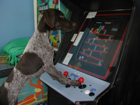 Paris playing Pinball - Free Stock Photo
