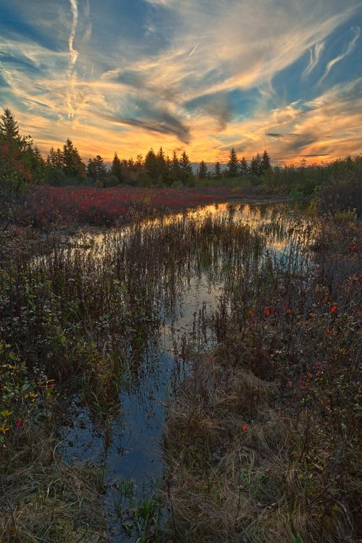 Free Stock Photo of Autumn Dolly Sods Sunset - HDR Created by Nicolas Raymond