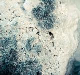 Free Photo - Crystallized Silica