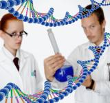 Free Photo - Medical Doctors Performing DNA Analysis