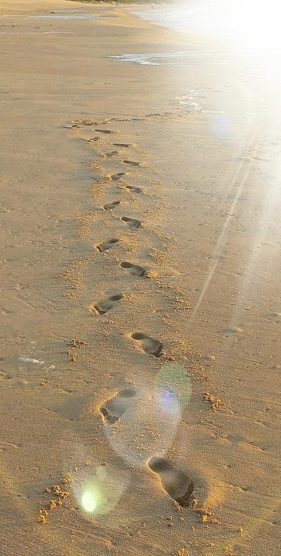Free Stock Photo of Footprints in the sand Created by Geoff Gartly