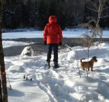 Free Photo - Snowshoeing