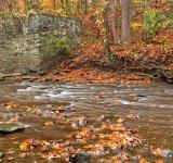 Free Photo - Rustic Fall Creek - HDR