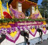 Free Photo - Flower Float
