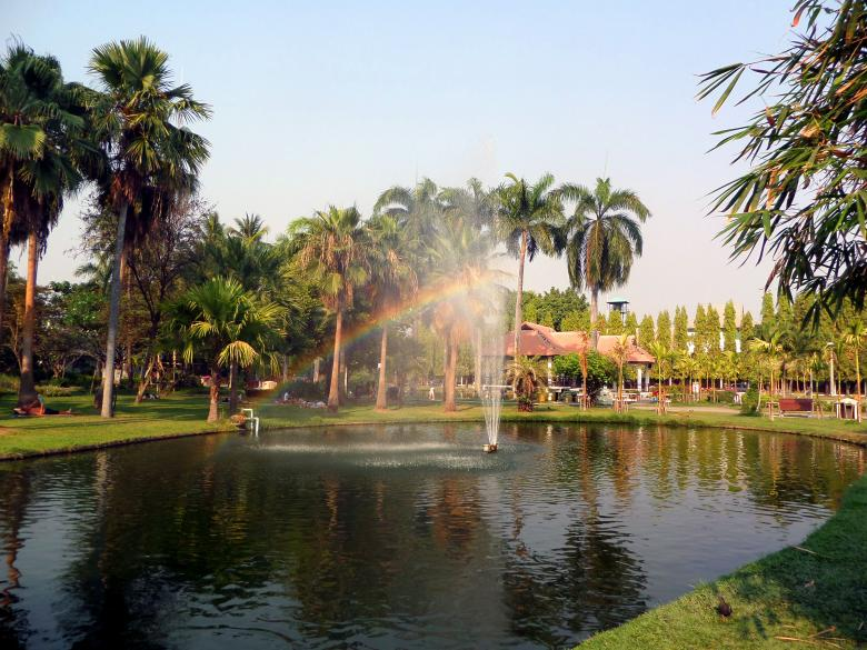 Free Stock Photo of Buak Haad Park Created by Chas Mac