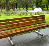 Free Photo - Bench in a park