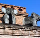 Free Photo - Sacred Elephant Sculptures