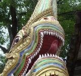Free Photo - Naga Face and Teeth