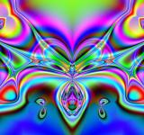 Free Photo - Abstract Buttfly