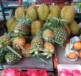 Free Photo - Tropical Fruit stall