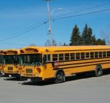 Free Photo - School busses