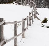 Free Photo - Winter Scene