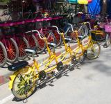 Free Photo - Multi-rider bicycles