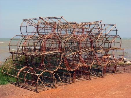 Crustacean fishing traps - Free Stock Photo