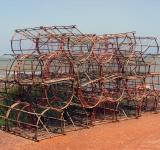 Free Photo - Crustacean fishing traps