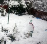 Free Photo - Snowman in a snow-covered garden
