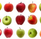 Free Photo - Set of apples