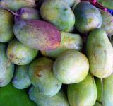 Free Photo - Mangoes for sale