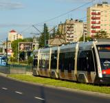 Free Photo - Tramino Solaris