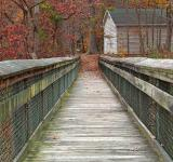 Free Photo - Rustic Autumn Boardwalk - HDR