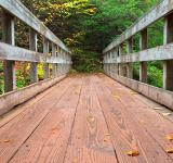 Free Photo - Autumn Boardwalk Bridge - HDR