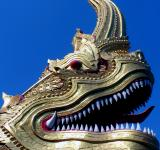 Free Photo - Naga head