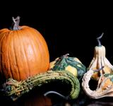 Free Photo - Gourds