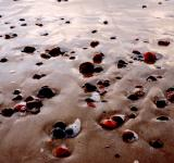 Free Photo - Sea shore