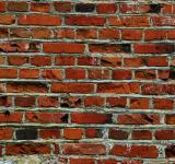 Free Photo - Natural brick wall