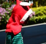 Free Photo - Teenager in a Christmas Hoodie