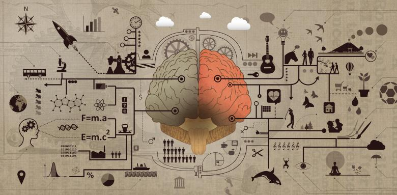Free Stock Photo of Learning and Education - Brain Functions Development Concept Created by Jack Moreh