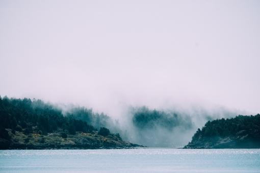 Clouds Covering the Forest - Free Stock Photo