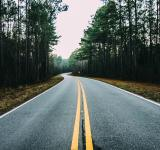 Free Photo - The Road