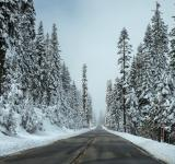 Free Photo - Cold road