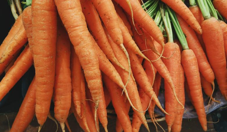 Free Stock Photo of Group of Carrots Created by Unsplash
