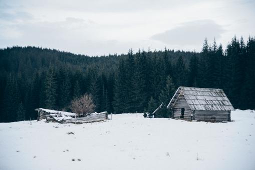 Lonely Cabin - Free Stock Photo