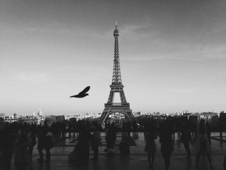The Eiffel Tower - Free Stock Photo