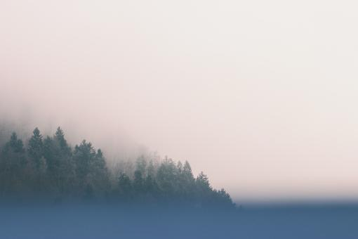 Foggy Landscape - Free Stock Photo