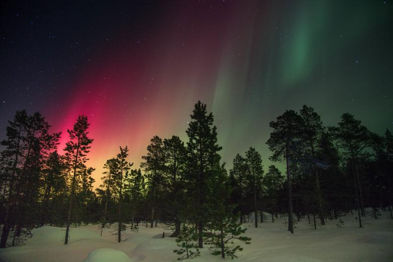Free Stock Photo of Colorful Northern Lights Created by Unsplash