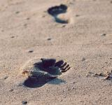 Free Photo - Footsteps