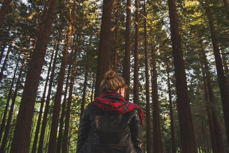 Free Stock Photo of Lonely Girl Created by Unsplash