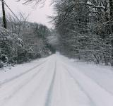 Free Photo - Snowy Road