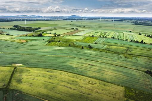 Green land - Free Stock Photo
